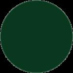 RAL 6005 Зеленый мох